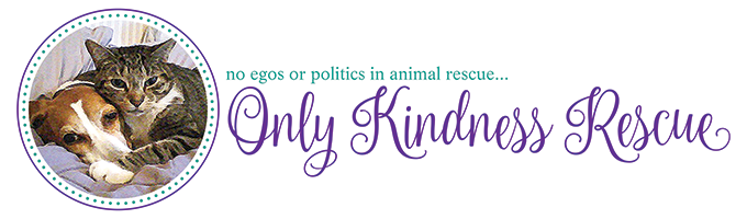 Only Kindness Rescue Logo